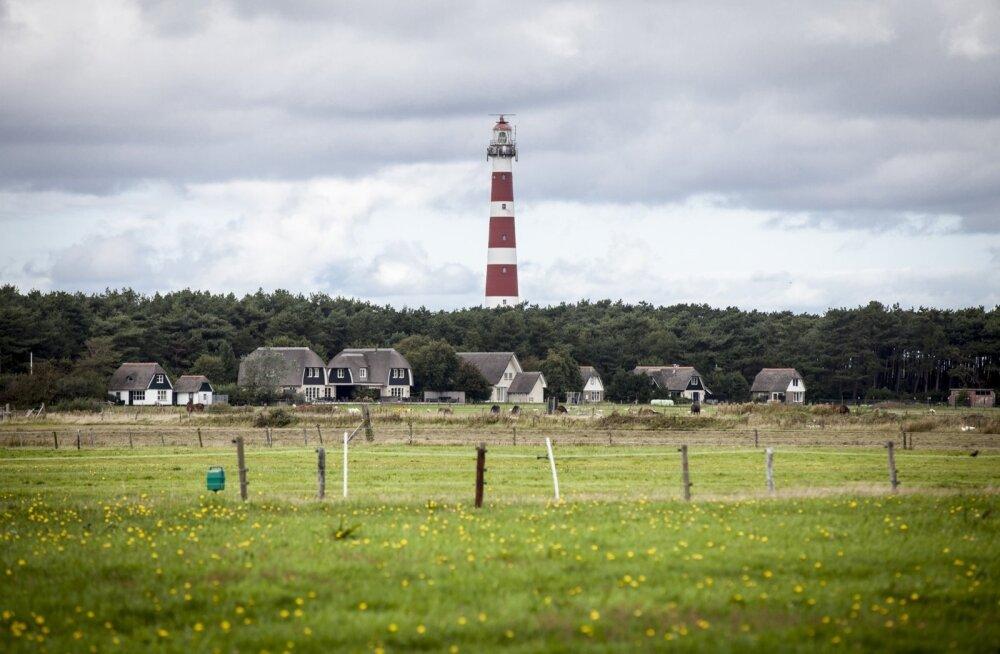 Üks Friisi saartest, liivadüünidega Ameland on ainus koht Hollandis, kus kasvavad jõhvikad.