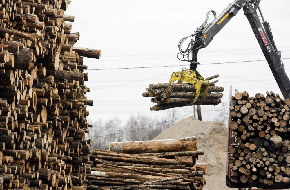 Metsatööstus.