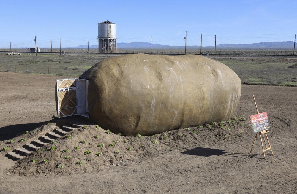 """На Airbnb сдается дом-""""картофелина"""""""