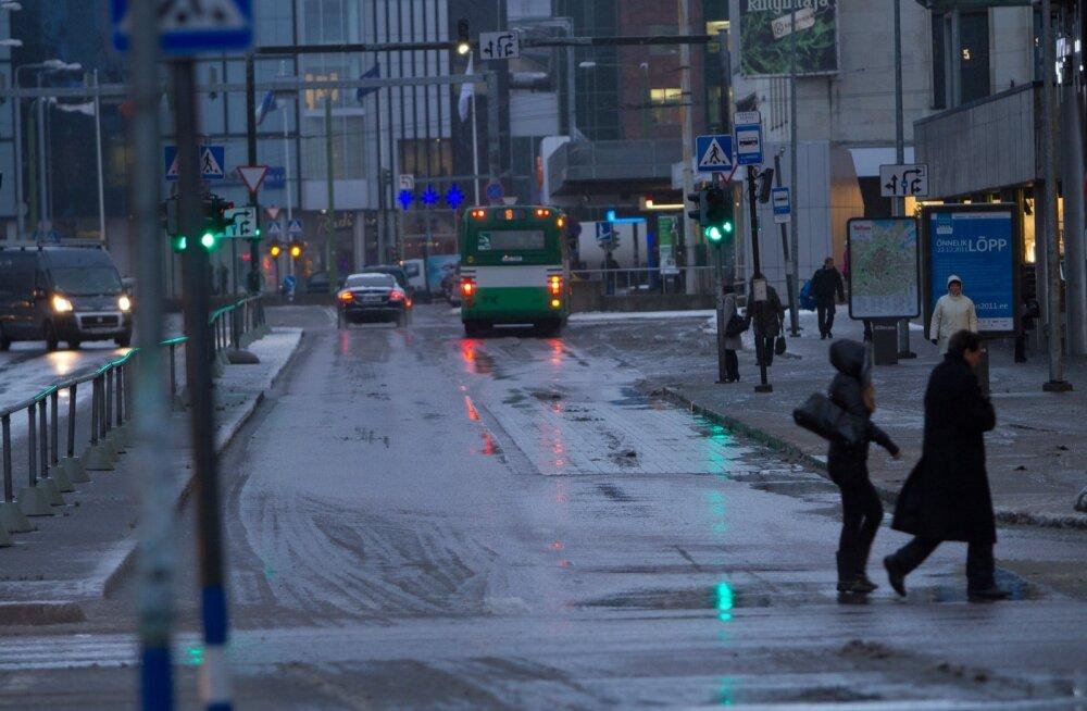Lörts Tallinnas