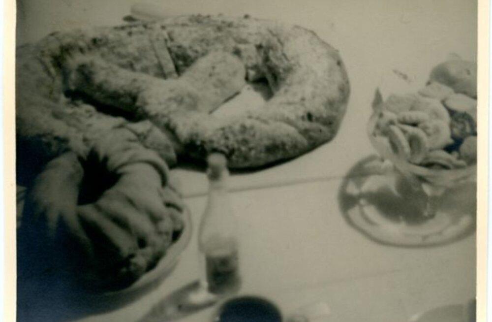 Tule ajalukku! | 1996: võigas vaatepilt - fekaalihunnikud võtavad magalate juures võimust