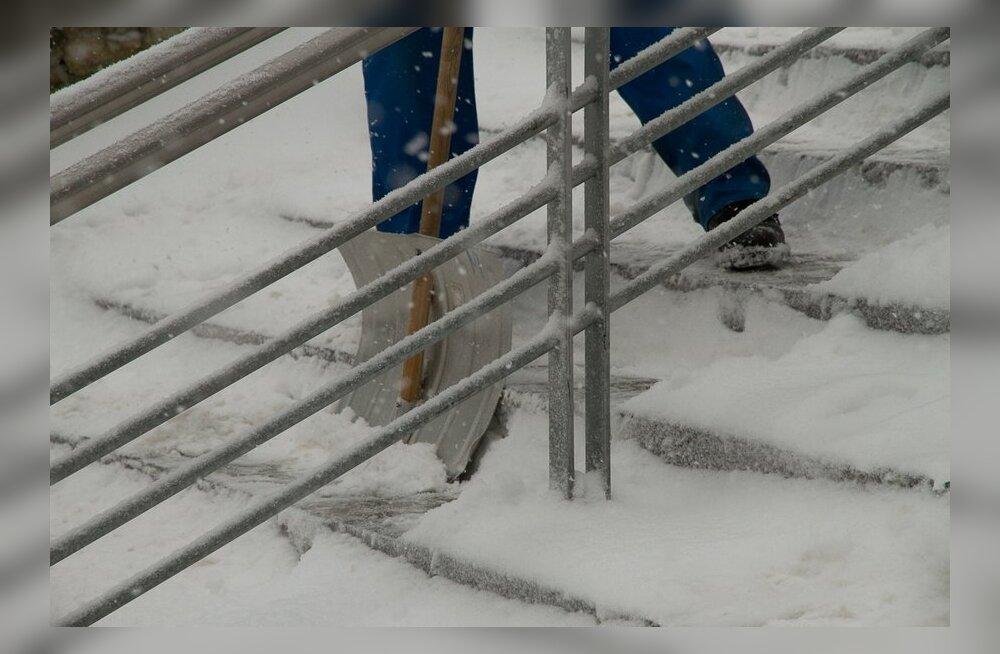 ANNA TEADA: Kumba eelistad - lumepuhurit või lumelabidat?