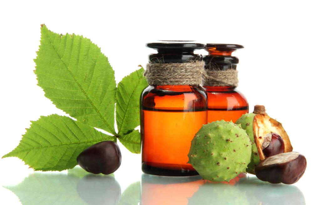 Tervisenipid: kastanimunad ravivad liigesepõletikku ja närvivalu