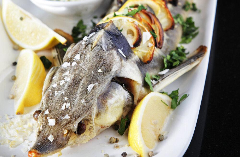 RETSEPT | Teeme jõuluaja eriliseks tuurakalaga