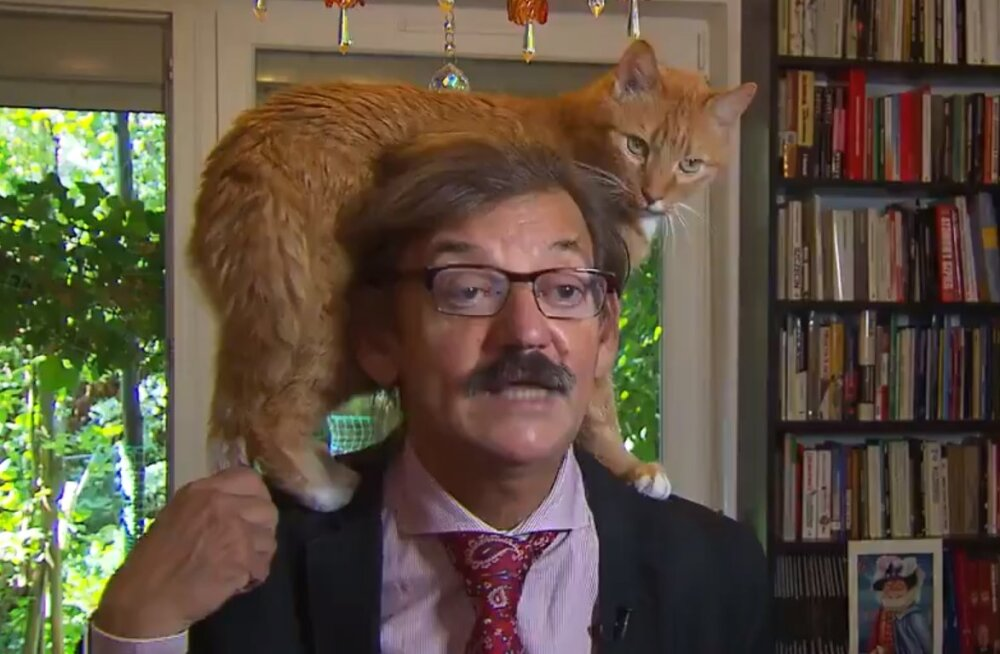 VIDEO   Kass pööras intervjuu pea peale, varastas akadeemiku tähetunni ja ronis ise otse kaamerapilti