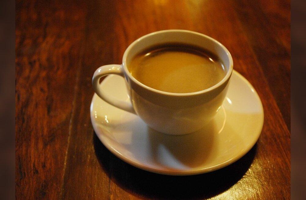 """Mida peidab kohvikruusi """"põu"""", on siililegi selga. Aga mis on Maa sees?"""