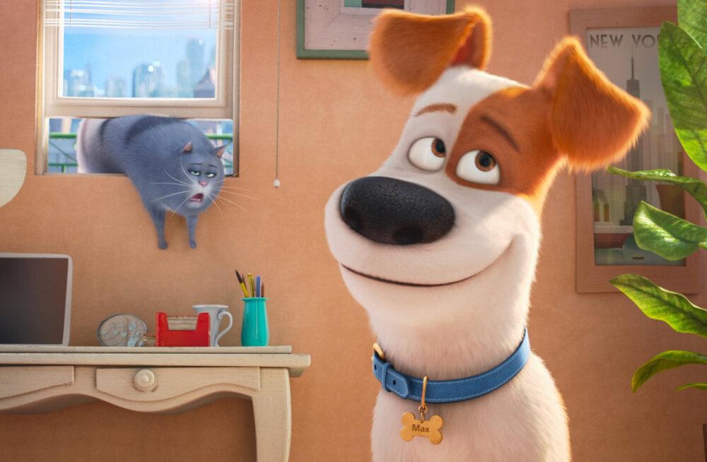 Nädalavahetuse TOP7: Jason Stathami uus film ei suutnud lemmikloomadest üle tõusta