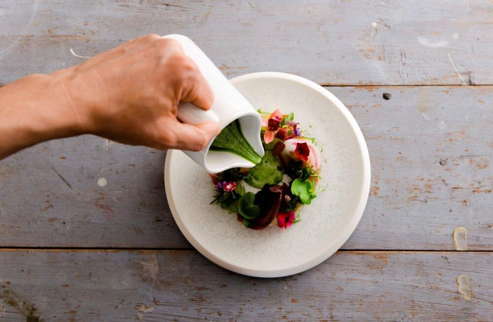 Суп из заячьей травы и джин-тоник из таволги: как дикие растения нашли свое место в финской кулинарии