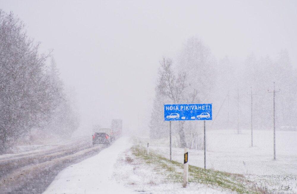 Lumesadu Viljandimaal