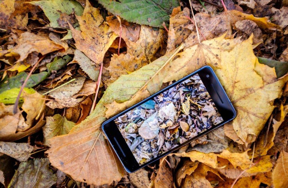 Android 9 on kohal: Google'i Pixel seadmed saavad uue operatsioonisüsteemi juba järgmisel nädalal