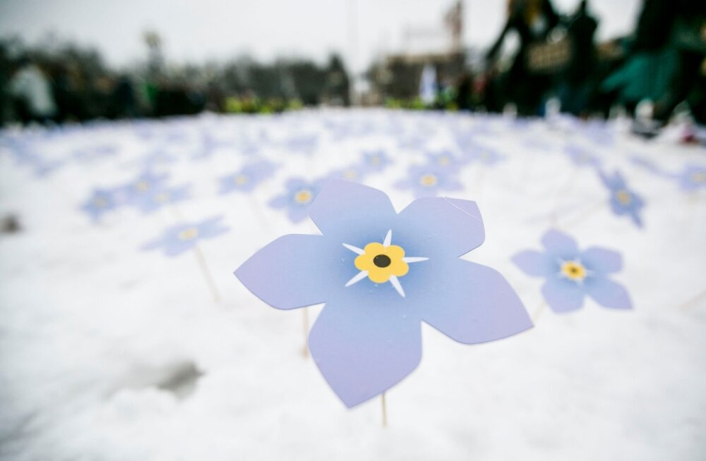 Kalmistul mälestatakse meelespealilledega 1991. aastal hukkunuid