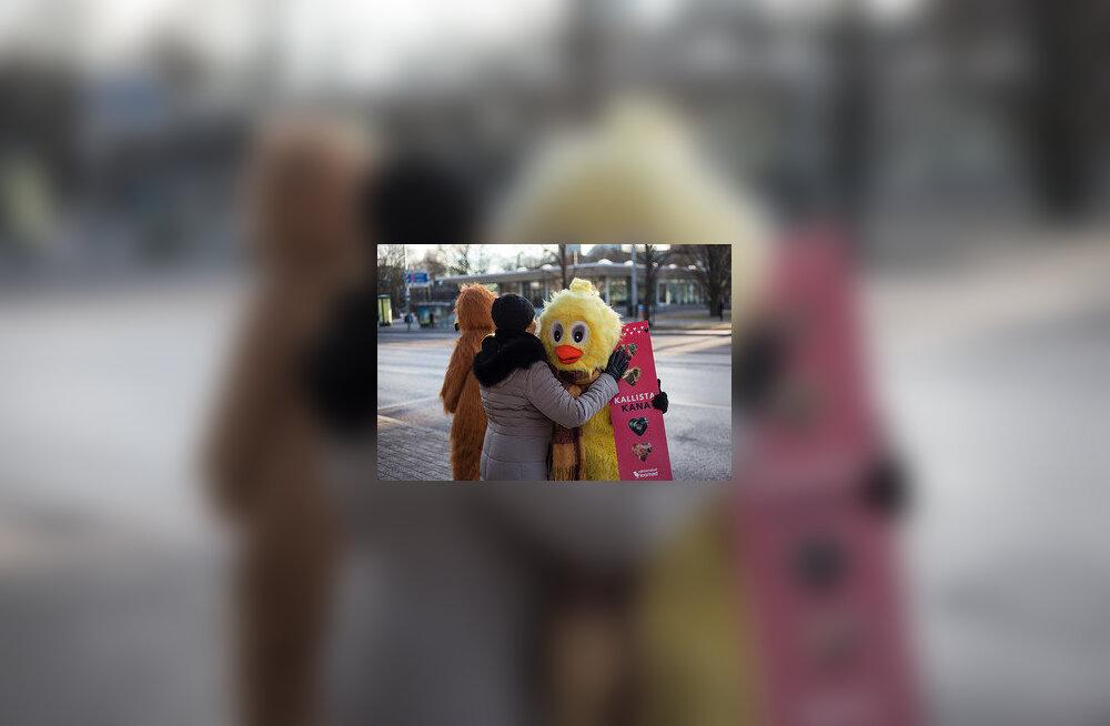FOTOD | Kanad kallistasid sõbrapäeva puhul möödujaid