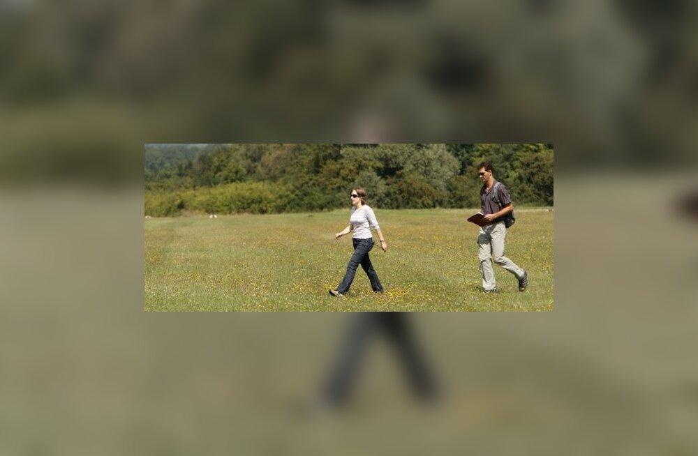 Harjutused roheluses parandavad vaimset tervist