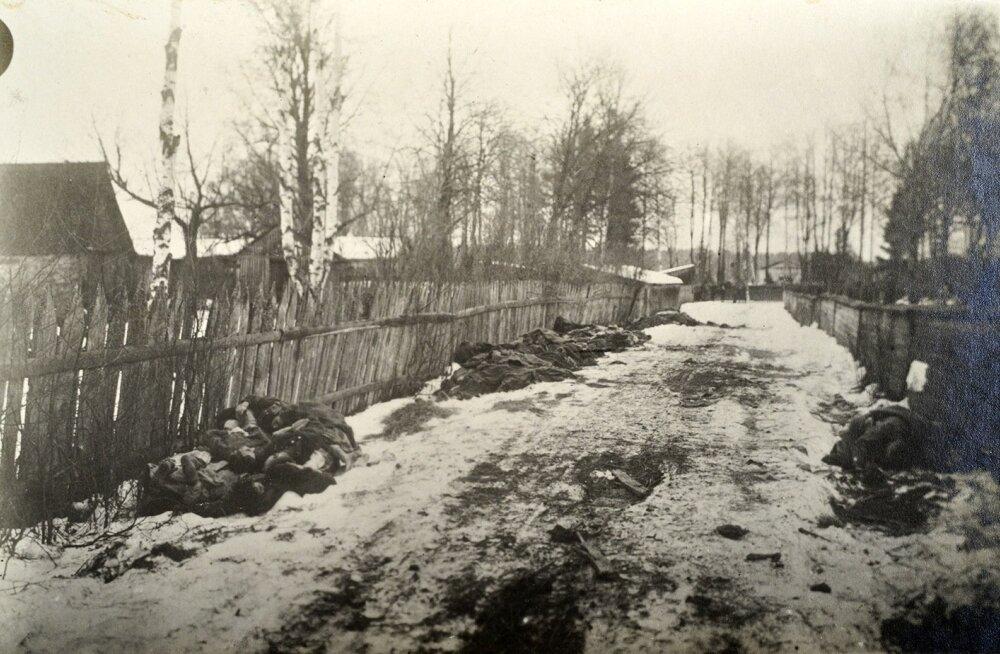 Черная смерть, холера и тиф: как эпидемии меняли историю Эстонии