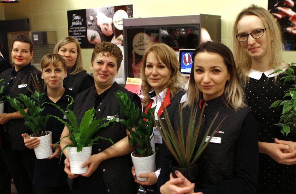 В Силламяэ открыли супермаркет Maxima XX