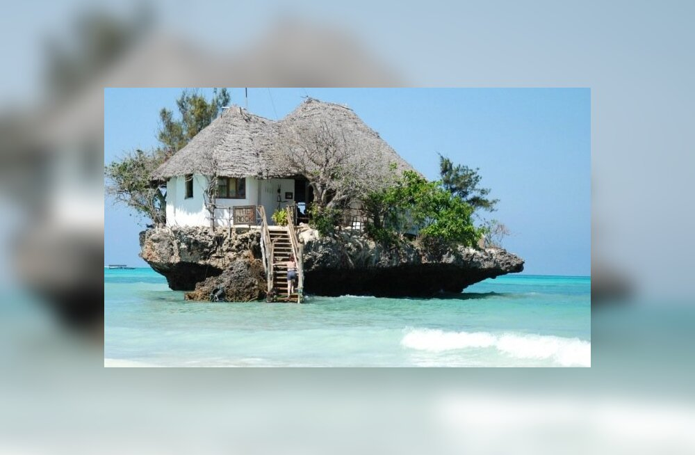The Rock Zanzibaris, Tansaania