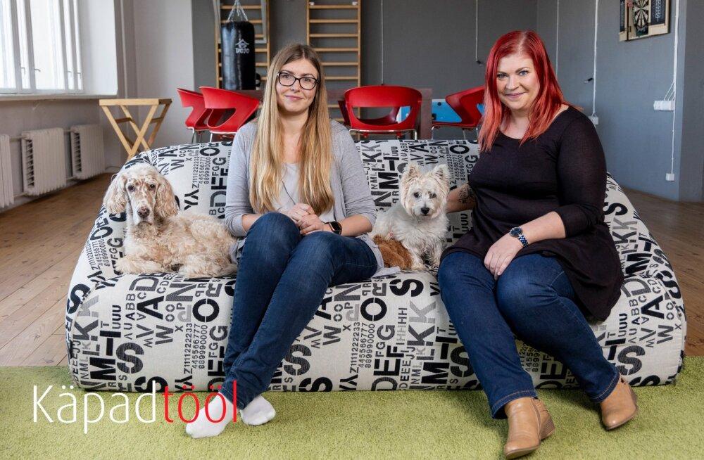 KÄPAD TÖÖL | Neli koera ja üks kass käivad tööl