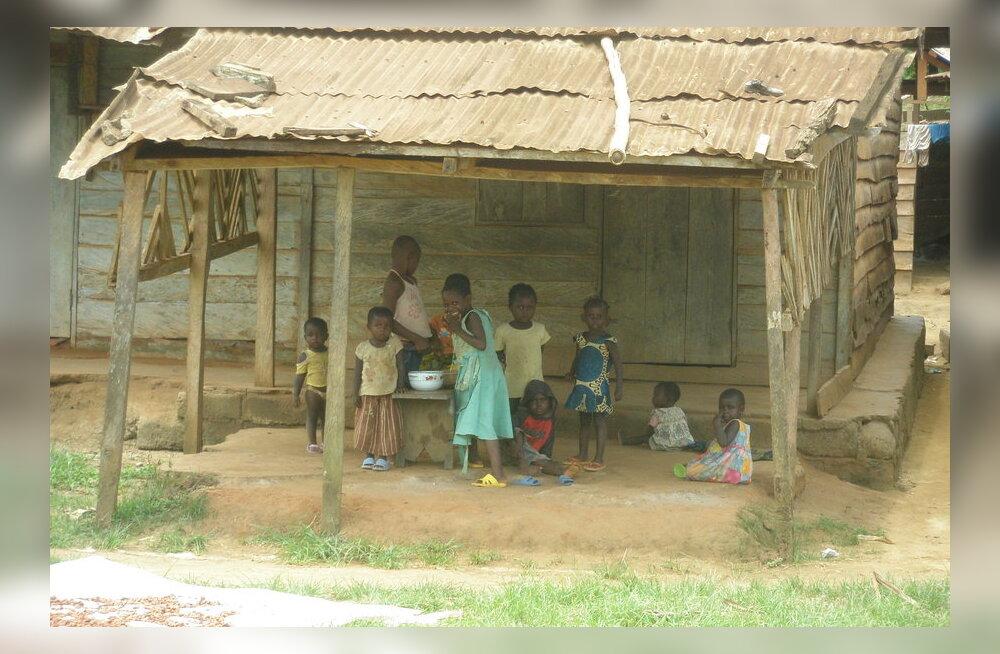 Reisikiri: Kamerunis Gerald Durrelli jälgedes
