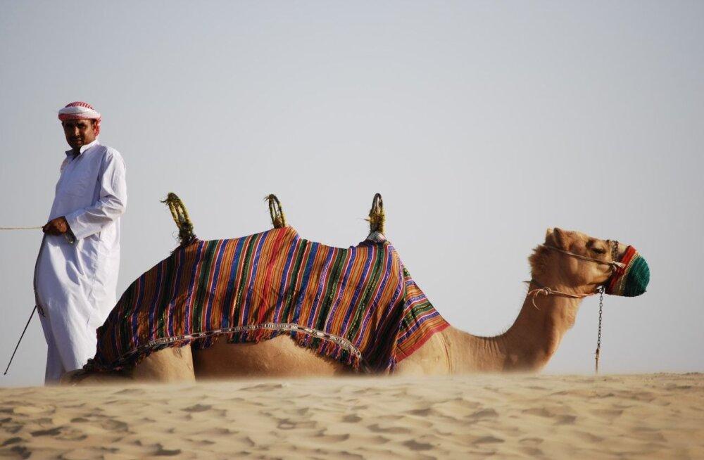 Диванные предрассудки про Дубай