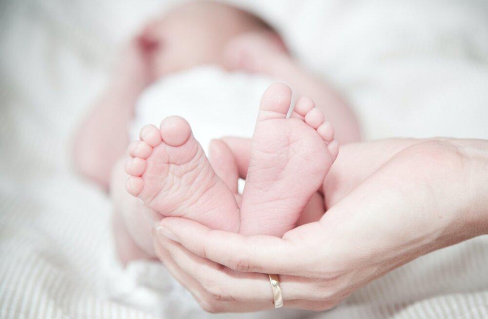 НоворОжденный или новорождЁнный: как правильно?
