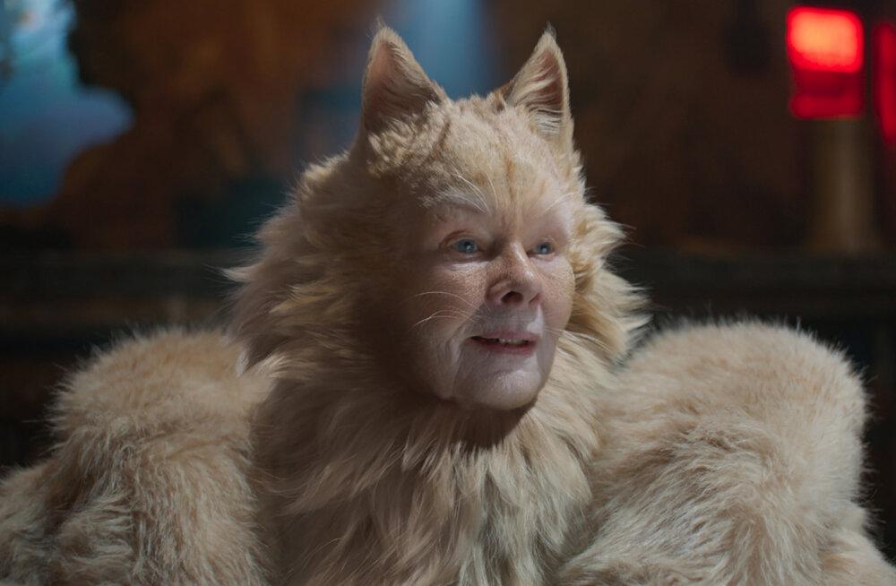 """Dame Judi Dench filmi """"Kassid"""" kostüümist: nagu viis rebast k******* mul seljas"""