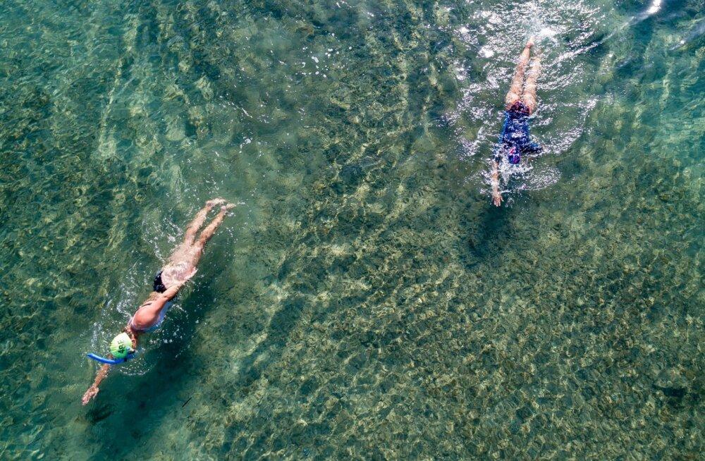 Marko Pomerants: kus võiksid ujuda presidendi lapsed?