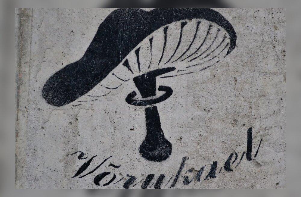 FOTOD: Šablooni- ehk stencilgrafiti kogub populaarsust