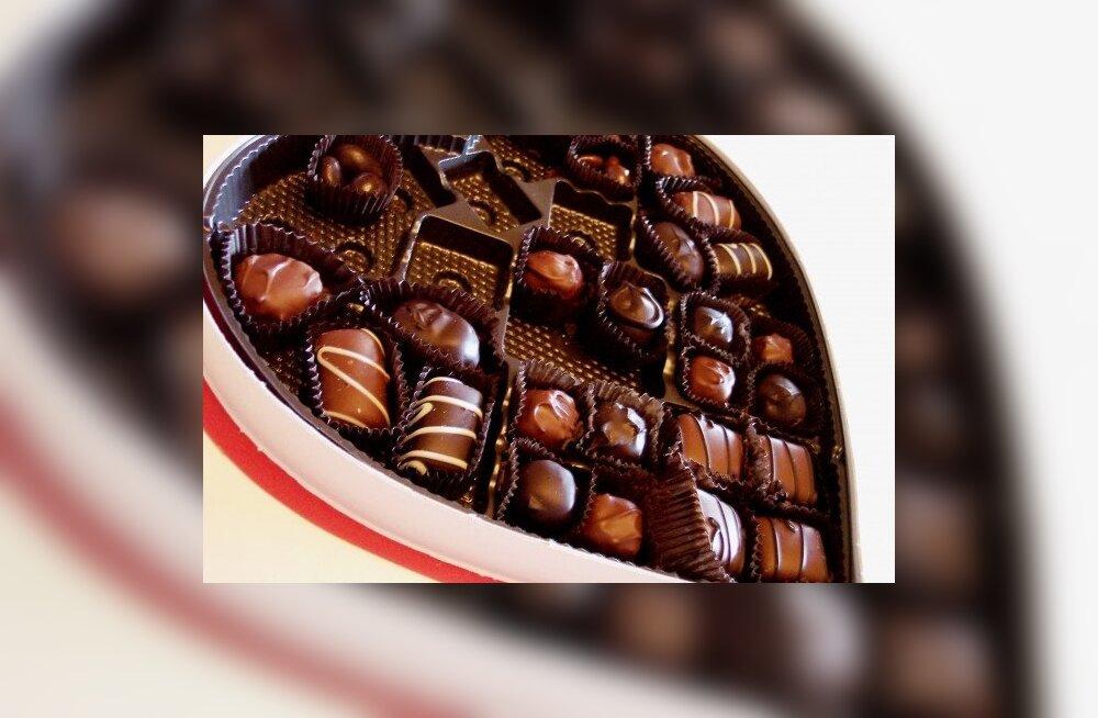 Foto: MorgueFile, šokolaadikarp