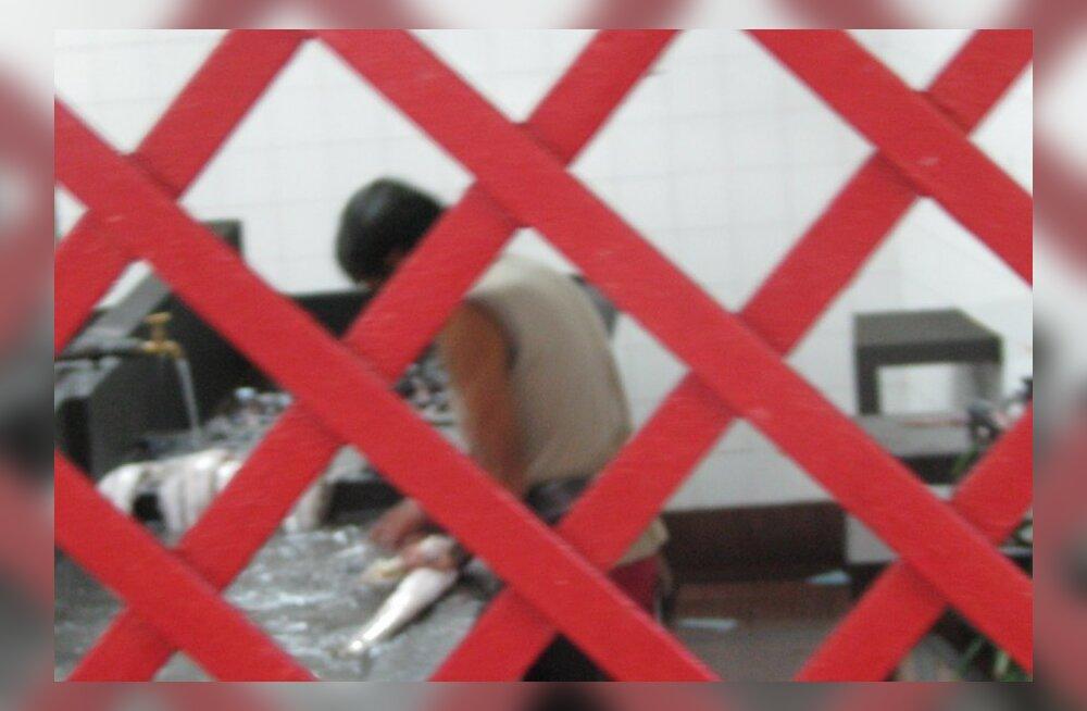 Raul Eamets: tulevikus Eesti ilma välistööjõuta hakkama ei saa