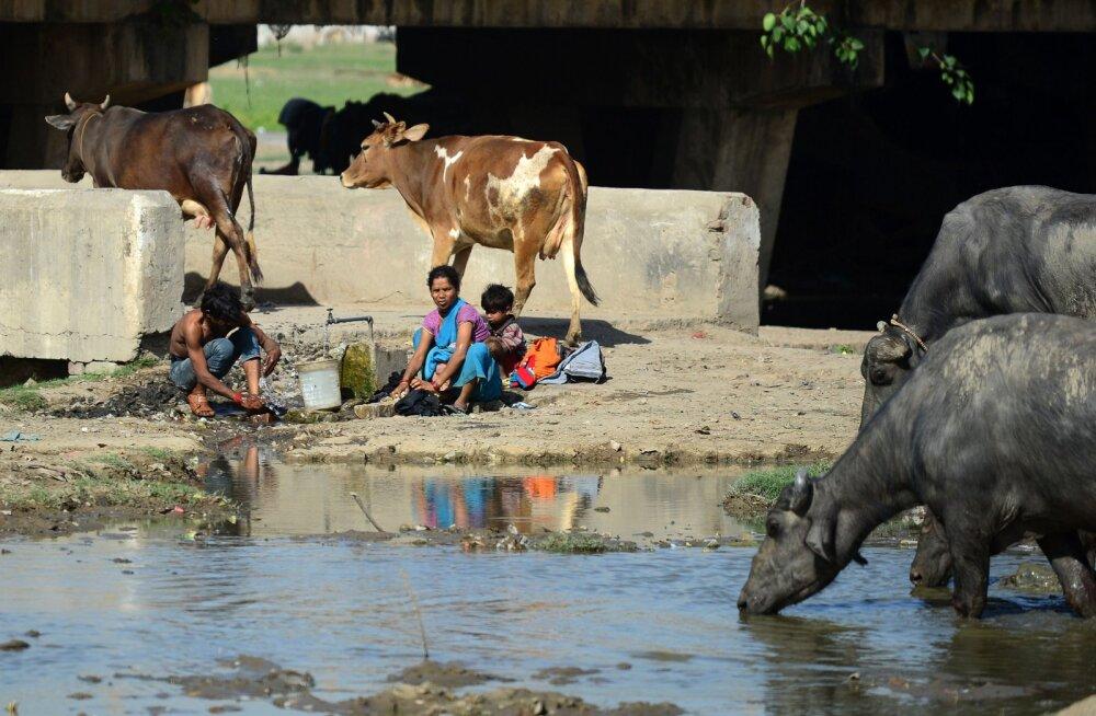 India turu jaoks leiutati omapärane pesumasin