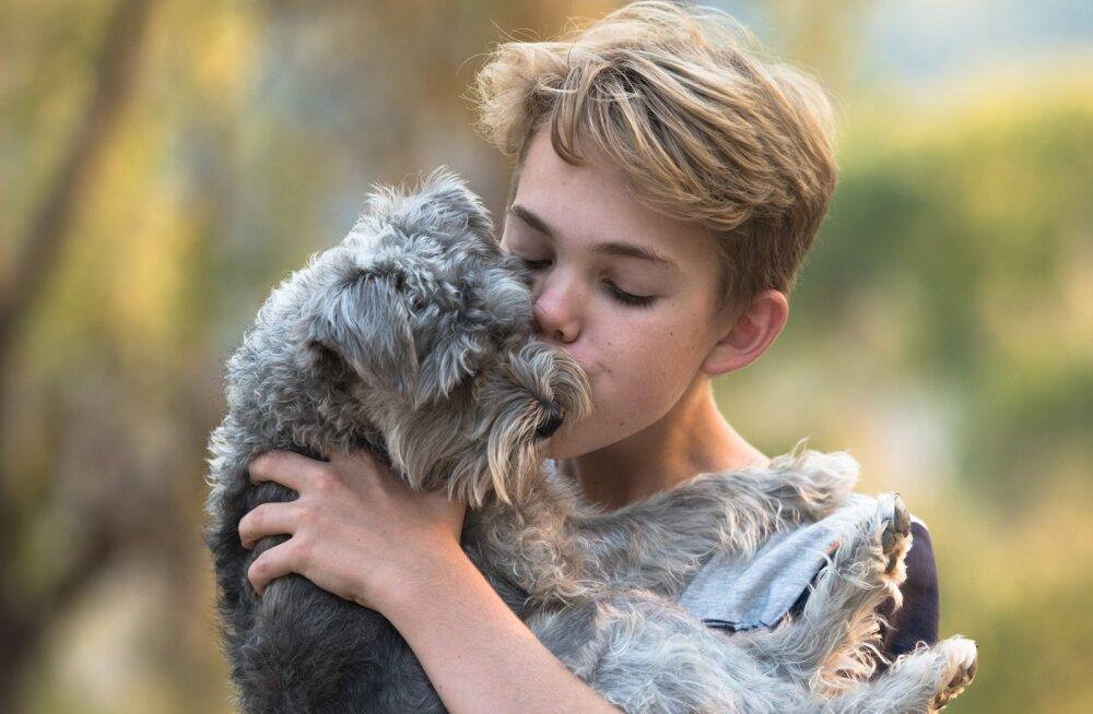 Võtta koer või mitte: kas tead, kuidas võib koer sinu lapsele kasulik olla?