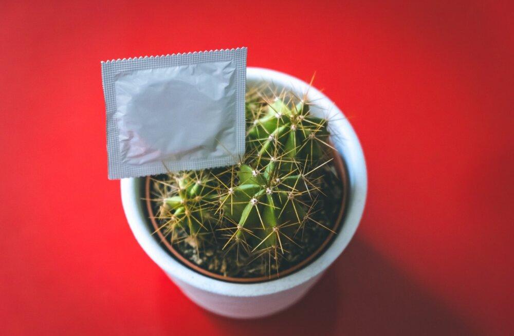 7 неожиданных методов контрацепции из прошлого, которые вас удивят