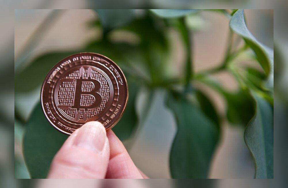 Eesti kaupmehed on aktiivseimad Bitcoini kasutajad!