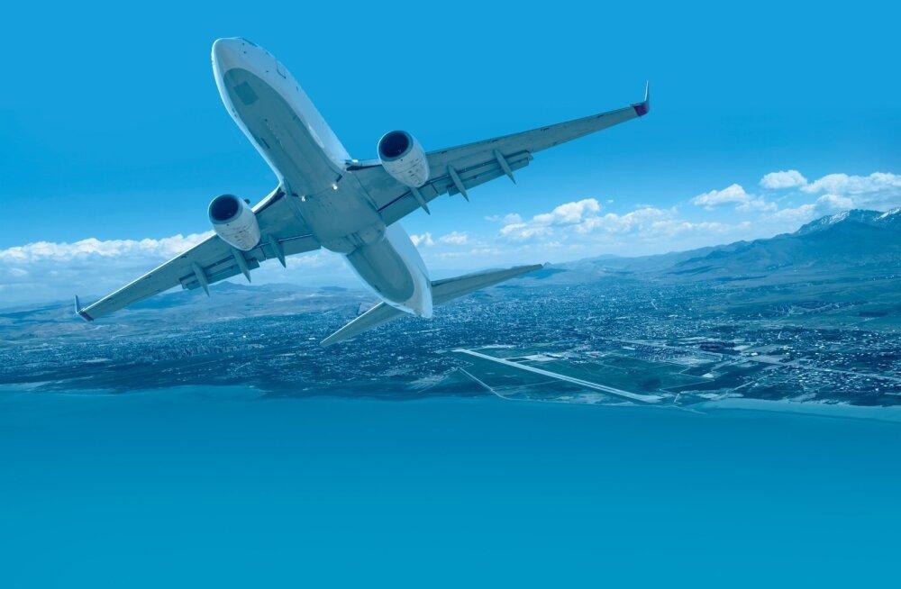 Otsingumootorite katse. Kust leida kõige odavamad lennupiletid?