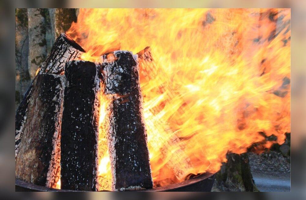 Prügi põletamine ahjus ja lõkkes ohustab keskkonda ja tervist