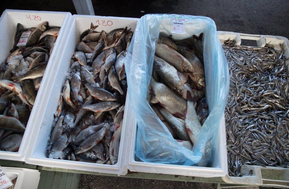 VIDEO   Jaburus kuubis! Kalakaupmees leidis huvitava viisi, kuidas oma toodangule värskemat välimust anda