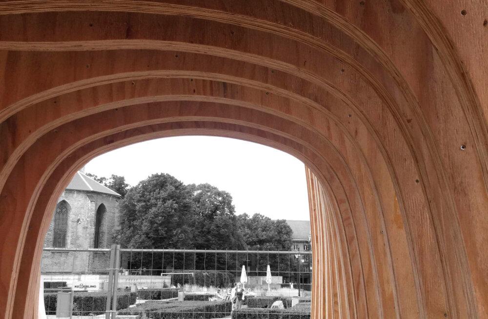 EKA tudengid tõmbavad puidu tähtsusele tähelepanu innovatiivse varjualusega