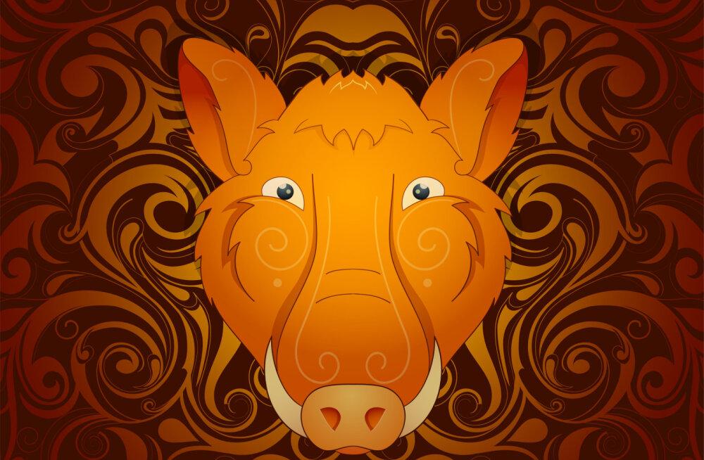 Mida näitab sinu looma-aasta märk? 12 fakti Sea aastal sündinud inimeste kohta