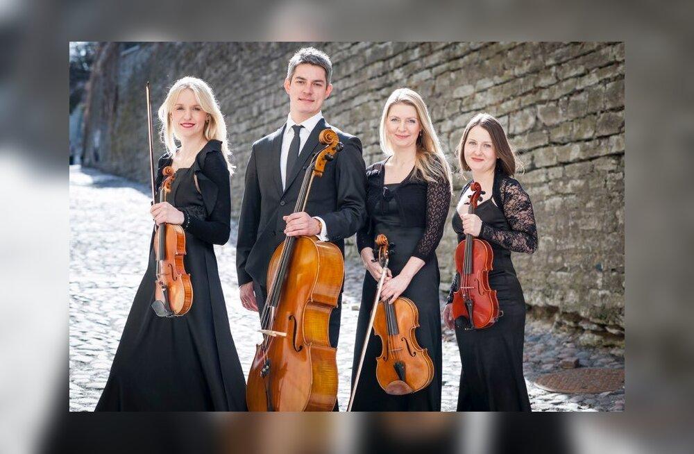 Keelpillikvartett Prezioso: oleme nagu abielus, kus peab arvestama nelja inimese soovidega