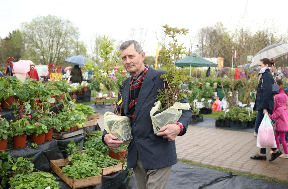 Eestlaste uskumatult aktiivne osalus on teinud Sigulda kevadüritusest Baltikumi suurima taimelaada