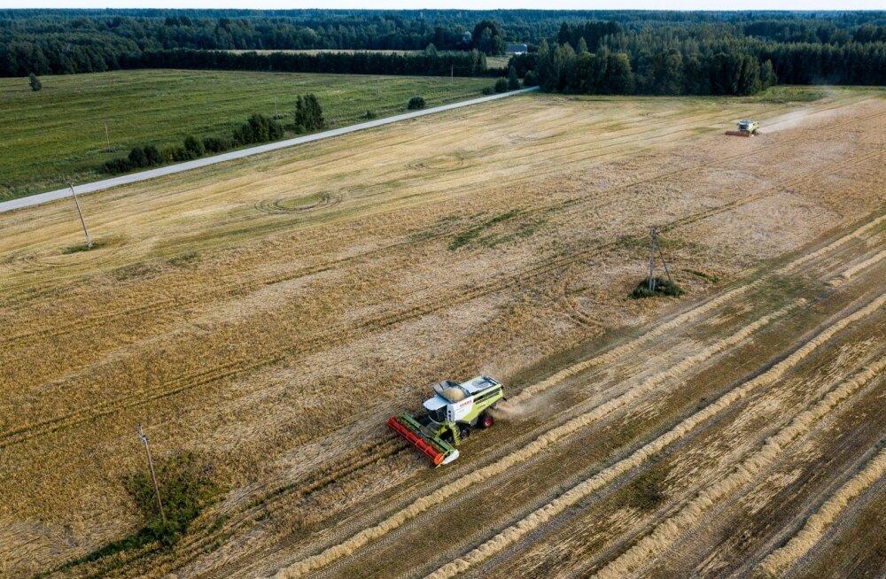 Правительство: ценные сельскохозяйственные земельные угодья нуждаются в правовой защите