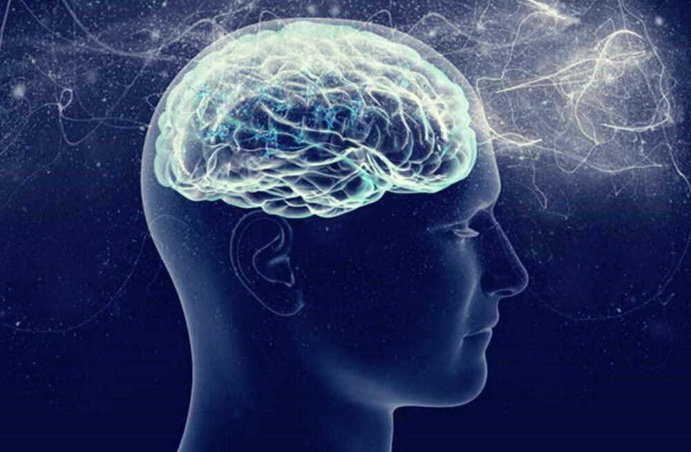 Alkeemia lugemisnurk: kuidas vabaneda teadlikest ja alateadlikest hirmudest?