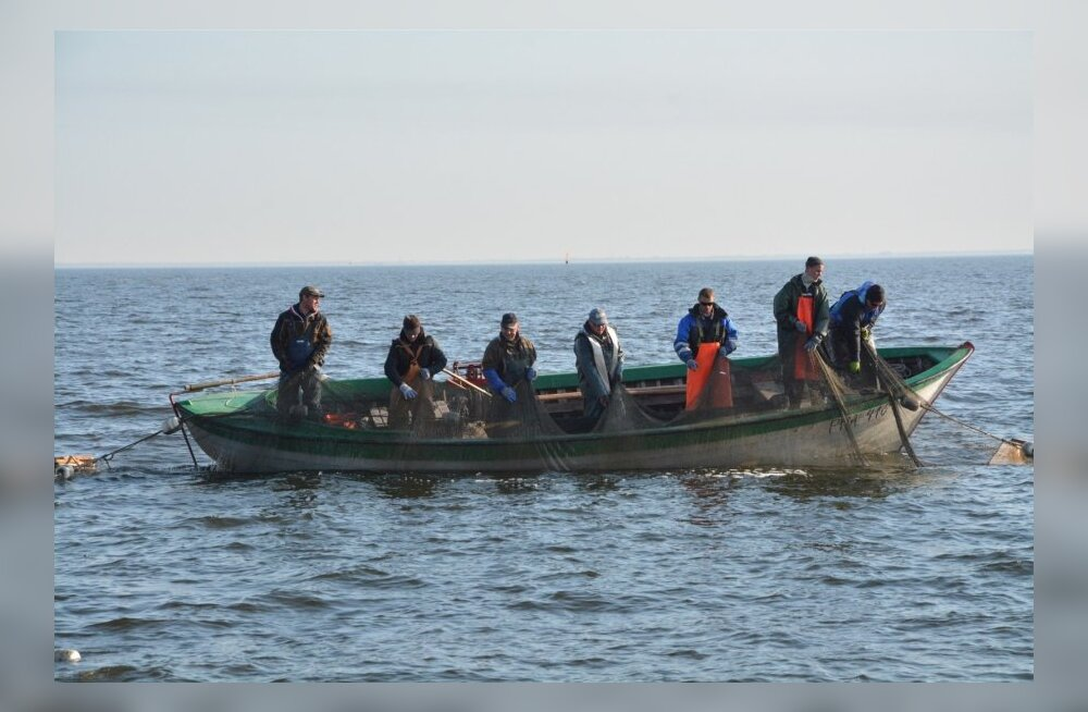 Kilu- ja lõhesaagi vähenemine võib mõjutada kalurite majanduslikku olukorda
