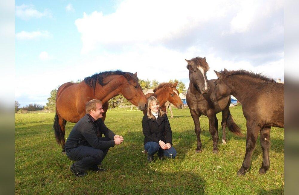 Eesti majatehas jagab Soomes tasuta hobuseid