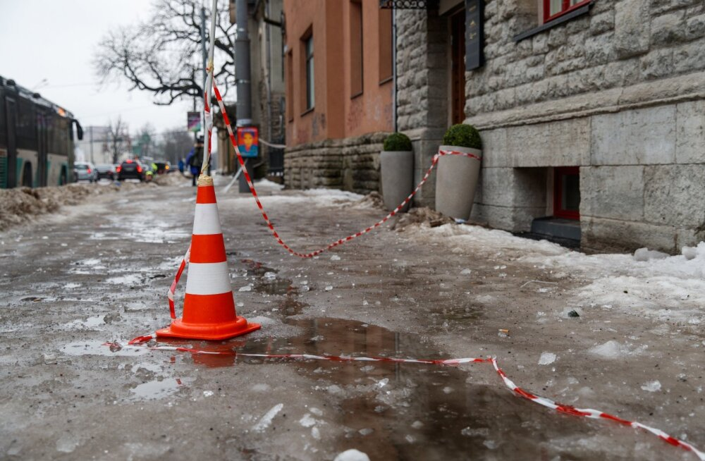 Libedad teed Tallinnas