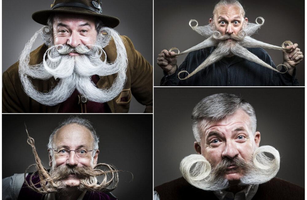 ФОТО: В США прошел чемпионат самых изящных усов и бород