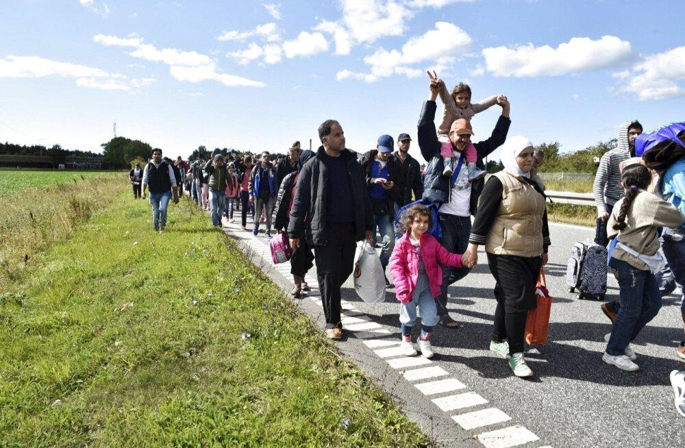FOTOD: Taani politsei sulges Rootsi pürgivate pagulaste tõttu kiirtee