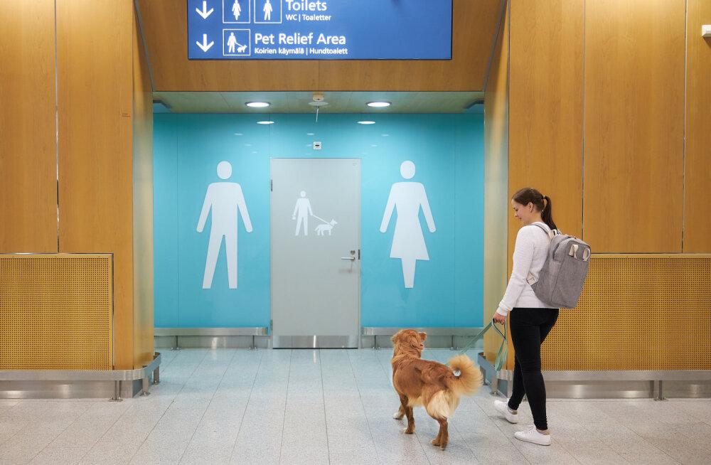 ФОТО: В аэропорту Хельсинки теперь и у собак есть свои туалеты
