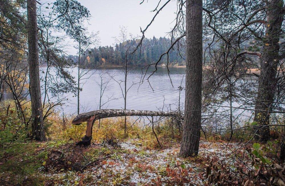 Kus on piir sügise ja talve vahel?