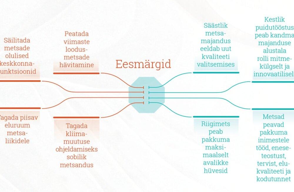 11 keskkonnaühendust avalikustasid nägemuse Eesti metsanduse tulevikust